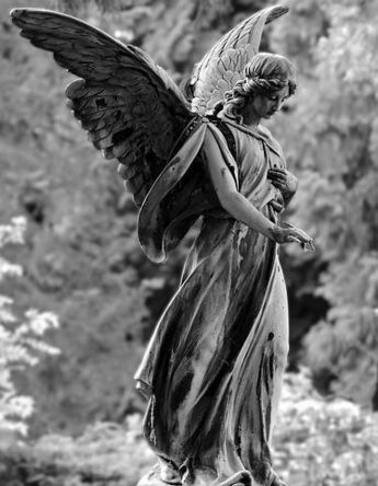 angel-2403401__480.jpg