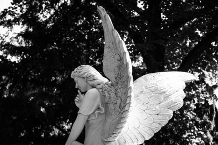 angel-2683072__480.jpg