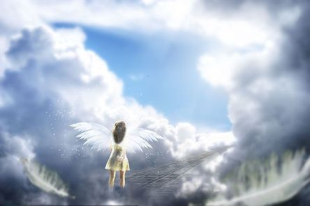 angel-673031__480.jpg