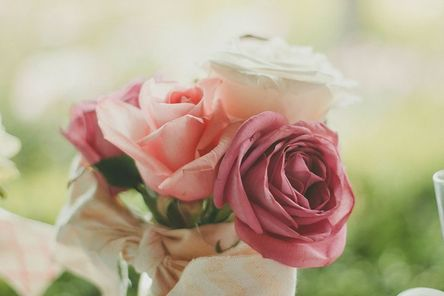 roses-983972__480.jpg