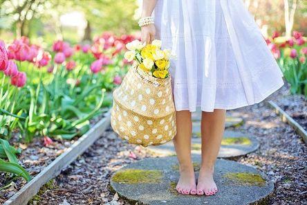 spring-2298279__480.jpg