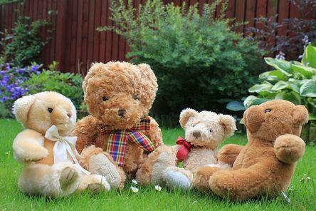 teddy-2508994__480.jpg