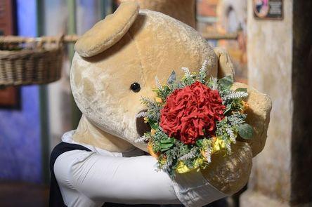 teddy-bear-2866435__480.jpg