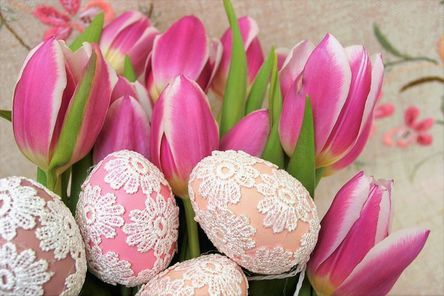 tulips-3113969__480.jpg