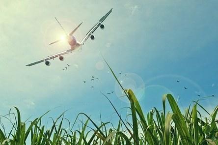 aircraft-465723__340.jpg