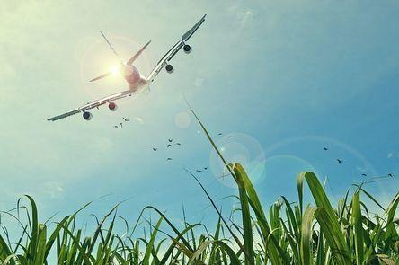 aircraft-465723__480.jpg