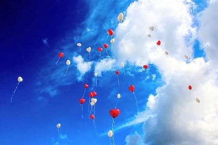 balloon-1046658__480~2.jpg