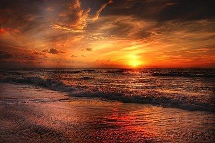 beach-2179624__340.jpg