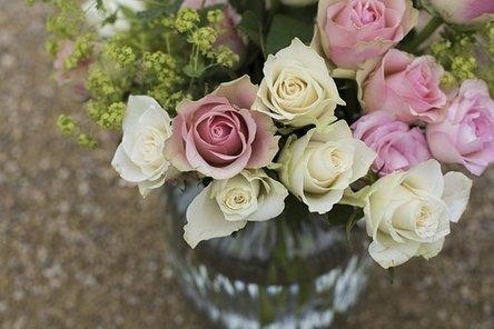 bloom-1867911__340.jpg