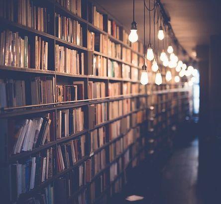 books-2596809__480.jpg