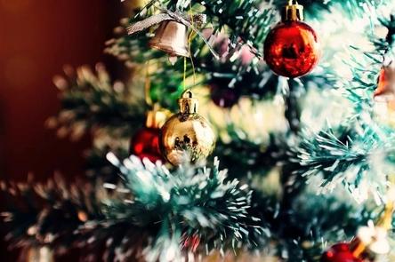 christmas-tree-1149619_1280~2.jpg