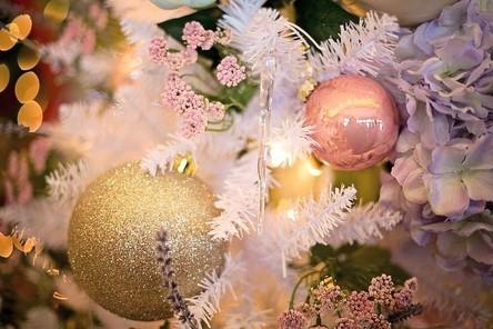 christmas-tree-3823674__480~2.jpg