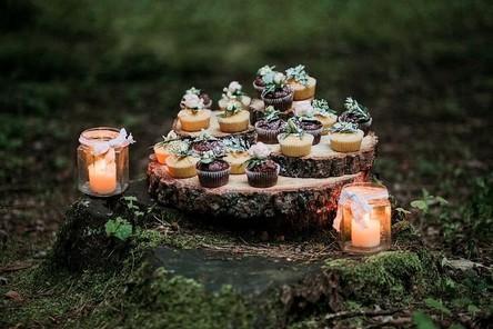 cupcakes-2599666__480~2.jpg