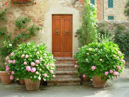 door-215349__480.jpg