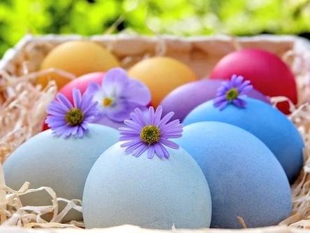 easter-eggs-4036904__480~2.jpg
