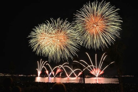 fireworks-535198__480~2.jpg