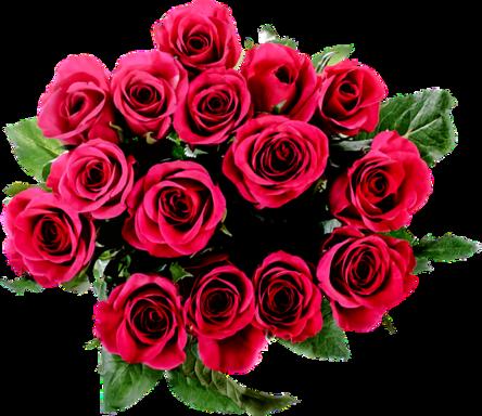 flora-2028344__480.png
