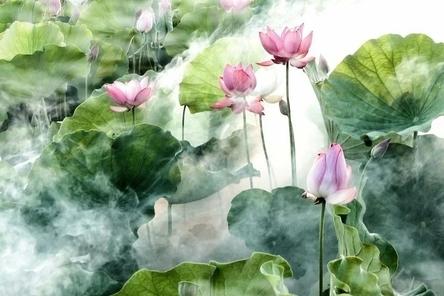 flower-2542231__480~2.jpg