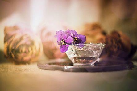 flower-3083448__480.jpg
