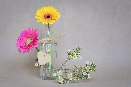 flowers-1286818__480.jpg