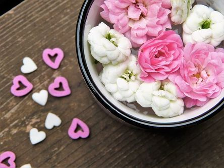 flowers-2537993__480.jpg