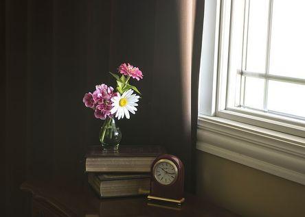 flowers-2706250__480.jpg