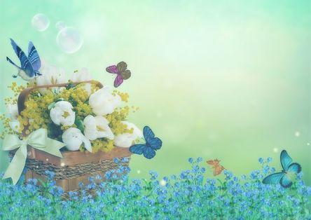 flowers-4083439__480.jpg