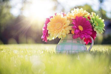 flowers-in-pitcher-796516__480.jpg