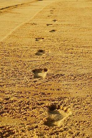 footprints-2502408__480.jpg