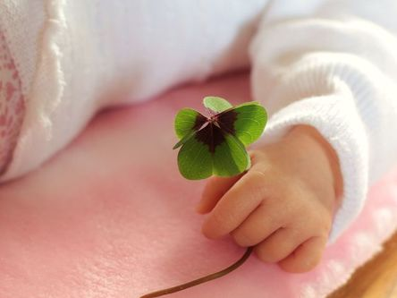four-leaf-clover-1892660__480.jpg
