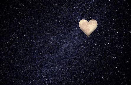 heart-1164739__480.jpg