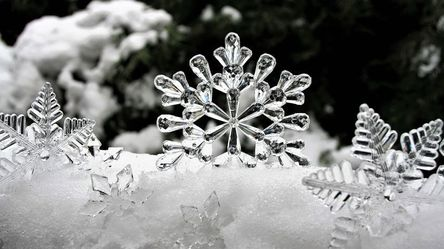 ice-3009009__480.jpg