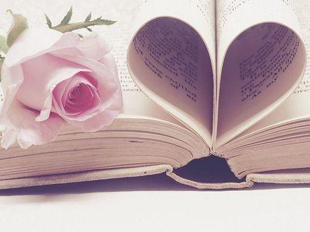 literature-3060241__480-1.jpg