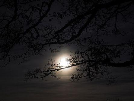 moon-1024914__480.jpg