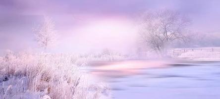 nature-4549913__480~2.jpg