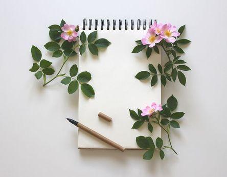 notebook-3397136__480.jpg