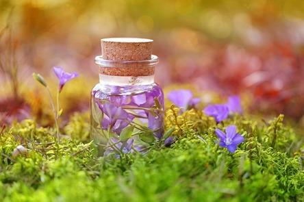 purple-3102305_1280.jpg