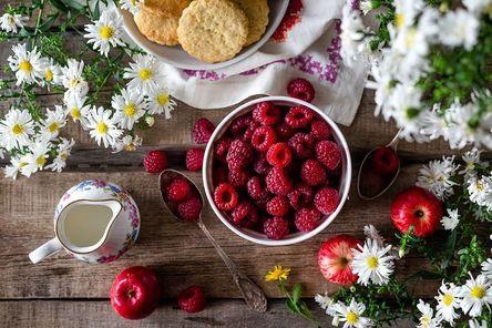 raspberry-2023404__480.jpg