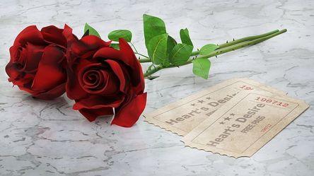 red-roses-2442147__480.jpg