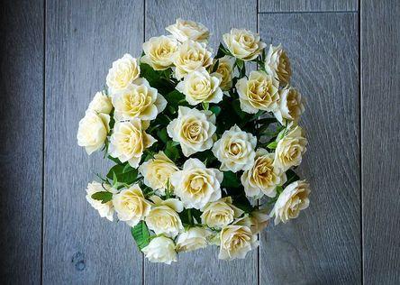 roses-2198158__480.jpg