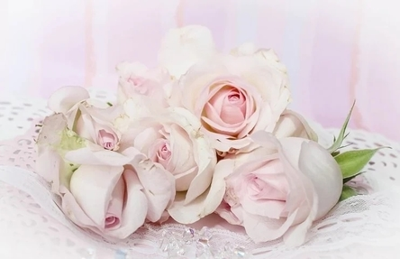 roses-2264615__480~2.jpg