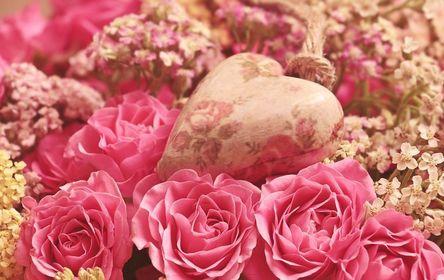 roses-3699995__480-1.jpg