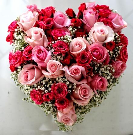 roses-719095_1280.jpg