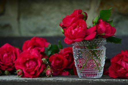 roses-821705__480.jpg