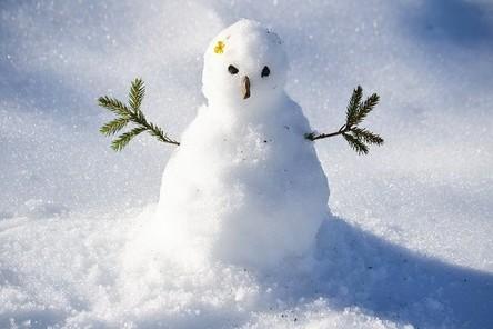 snow-man-1227476__480~2.jpg