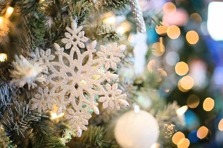 snowflake-1823942_1280~2.jpg