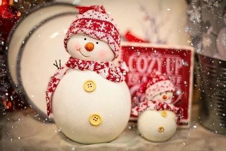 snowman-2918177__480~2.jpg