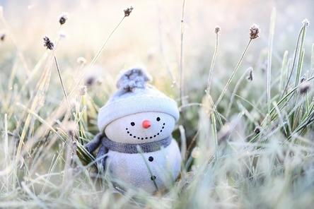 snowman-4674856_1280~2.jpg