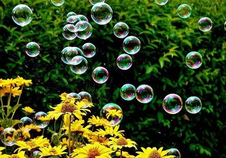 soap-bubbles-3540303__480.jpg