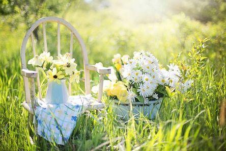 summer-still-life-779386__480.jpg